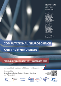 Computational Neuroscience and the Hybrid Brain_3